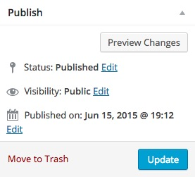 Publish / Update Button